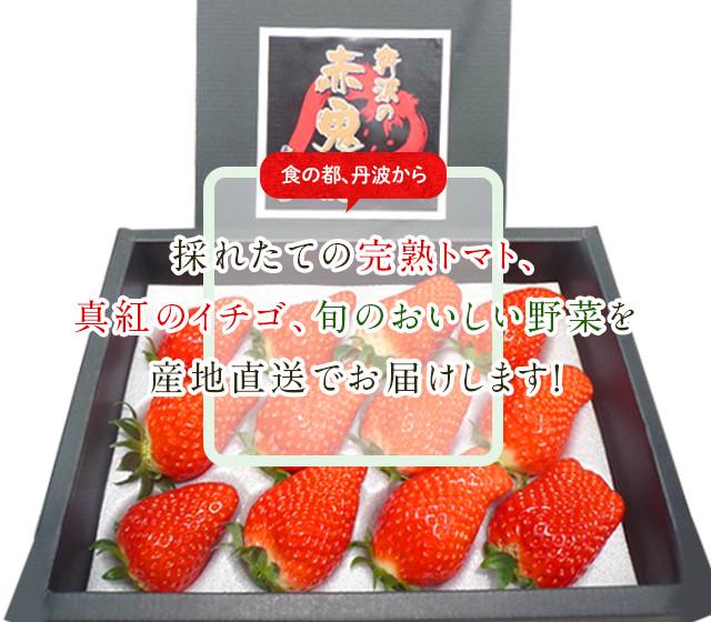 食の都、丹波から、採れたての完熟トマト、真紅のイチゴ、旬のおいしい野菜を産地直送でお届けします!